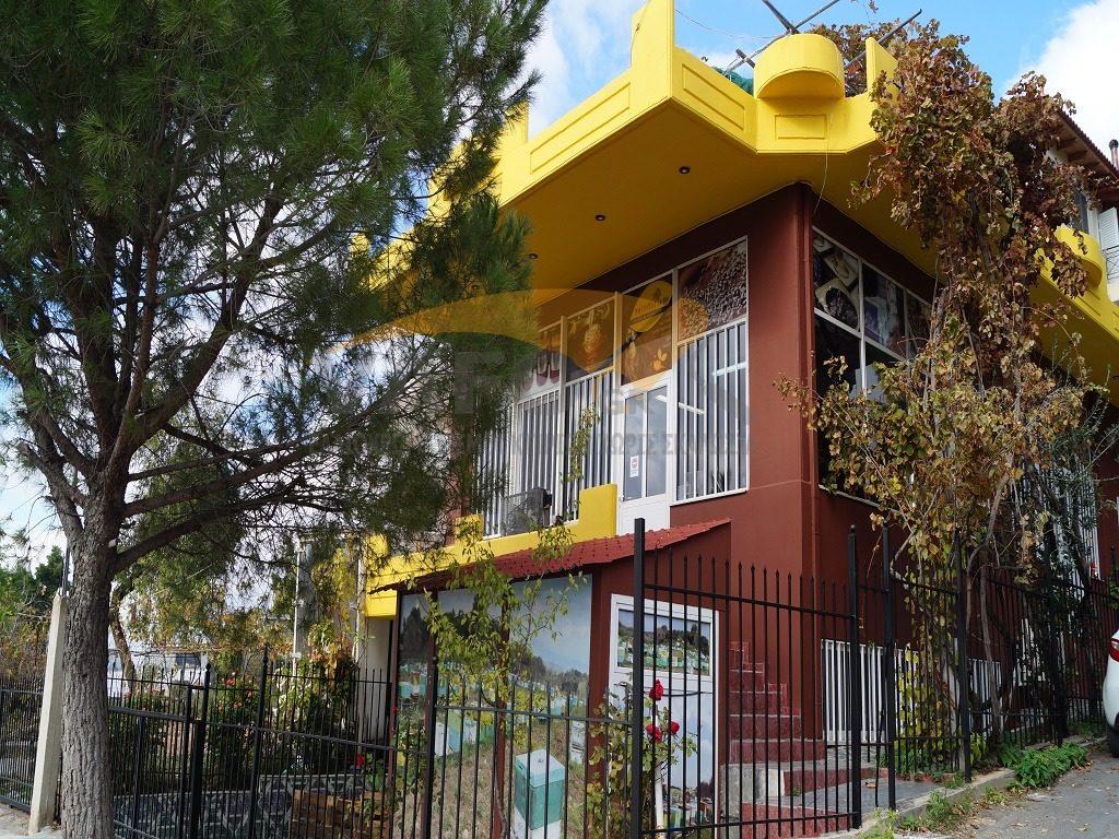 Ελαιοχρωματισμοί Κτιρίων πολυκατοικιών βάψιμο χωρίς σκαλωσιά πολυκατοικίας